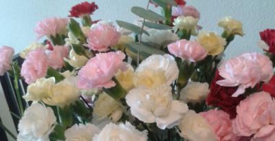 ramo de clavelinas colores