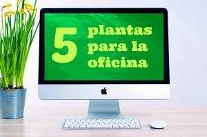 5-plantas-oficina