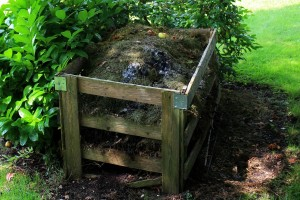 compost-jardin