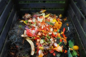 compost-restos-recipiente